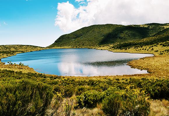 Κένυα - Σαφάρι